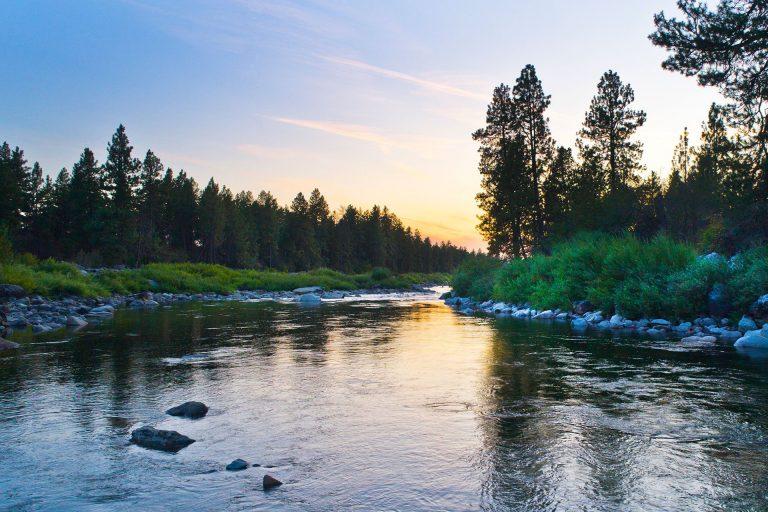 DJI_0999-river-2019(2)